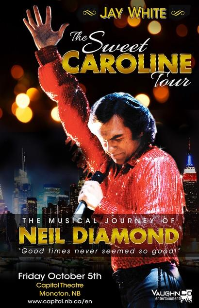 The Ultimate Neil Diamond Tribute Show Image 1